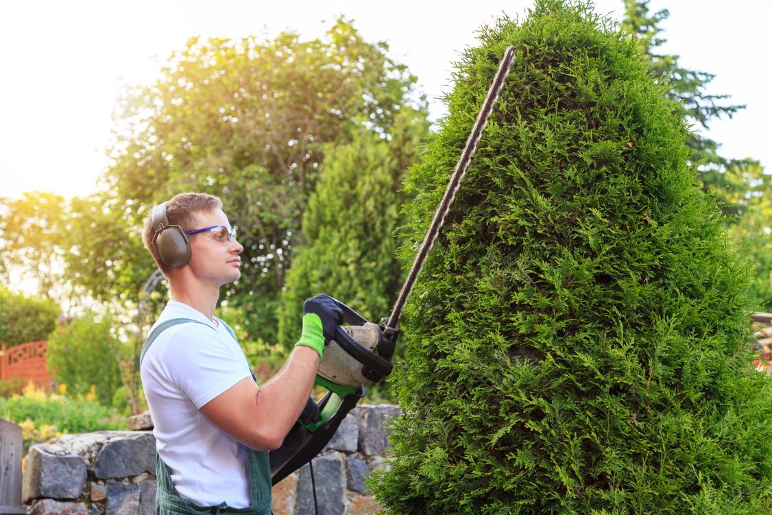 Guddat-Garten-Landschafstbau-Heckenschnitt-Gartengestaltung